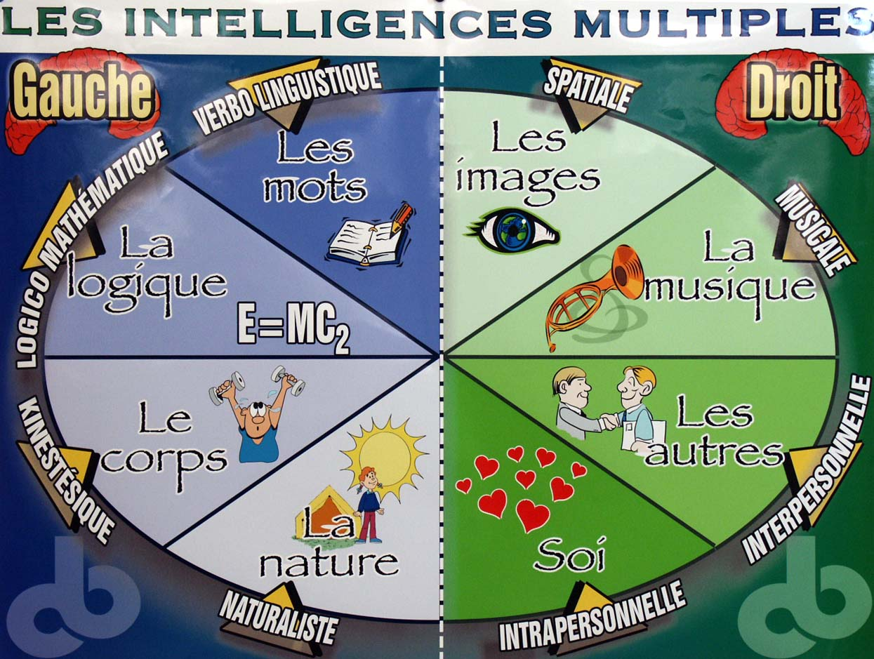 multiple intelligence theory and learning styles This is the hallmark of using the multiple intelligences theory in the classroom students bring varied talents into the classroom and teachers can build tasks into each lesson that allow students to interact with content in ways that fit their learning styles and strengths.